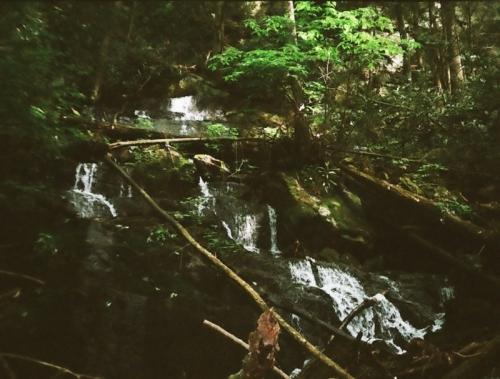 jonesbr_falls