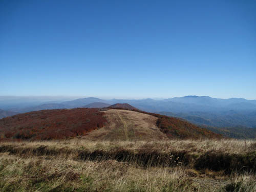View from the summit of Big Bald Mountain