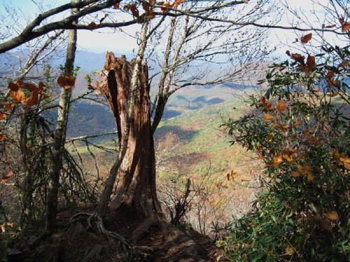Bluff on Summit of Little Bald Mountain
