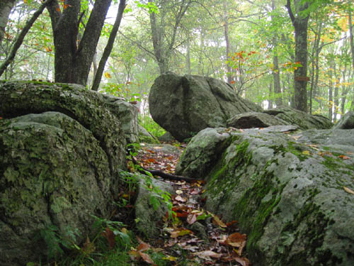 Rocks on the summit of Bluff Mountain